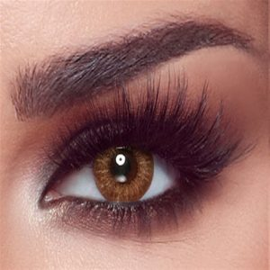 Bella One Day Collection Color Contact Lens - Almond Brown (10 lens/box)